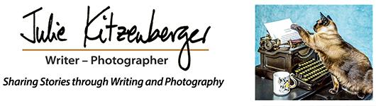 Julie Kitzenberger Logo